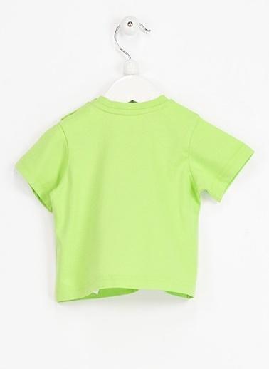Tişört-Locopop